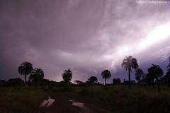 Tempestade elétrica (fabsciack) Tags: brazil brasil countryside farm thunderstorm lightning santacatarina serra thunder temporal fazenda tempestade raio fraiburgo