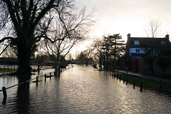 Ferry Lane, Laleham