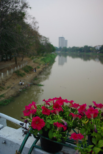 Ping River