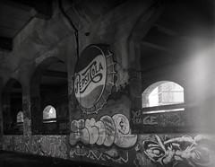 Say Pepsi, Please (Alex Luyckx) Tags: newyork abandoned film subway graffiti rust ruins publictransit kodak decay trix hc110 rochester urbanexploration infrastructure 4x5 sheet txt streetcar largeformat asa200 broadstreet graflex ue eriecanal speedgraphic urbex filmphotography broadstreetviaduct rochestersubway kodaktrixpan dilutione anniversaryspeedgraphic believeinfilm fujifujinonw156125