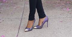 """Psyche Southwell: la magnifique Princesse Kittitinne de la mode est la reine du blog prim """"Economy of Style"""""""