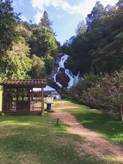 Felicidades, quieres de la chingada. (azuara11) Tags: nature cascada medellín colombia iphone naturaleza