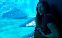 Aquarium_5-edit
