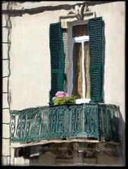 balconi fioriti (fotomie2009) Tags: savona balcony balcone finestra window liguria italy italia distorsione rifrazione refraction