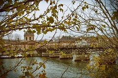 Paris (emilyeight_) Tags: paris parisphotography parisphoto pont pontdesarts france nikond5300 architecture fall parisinthefall seine