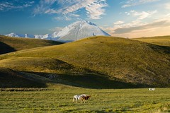 Immersive view (Mario Ottaviani Photography) Tags: sony sonyalpha italy italia paesaggio landscape travel adventure nature scenic exploration view vista breathtaking tranquil tranquility serene serenity calm marioottaviani immersive cloudscape horses grasslands green mountains