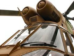 "Aerospatiale SA330B Puma 8 • <a style=""font-size:0.8em;"" href=""http://www.flickr.com/photos/81723459@N04/33043903764/"" target=""_blank"">View on Flickr</a>"