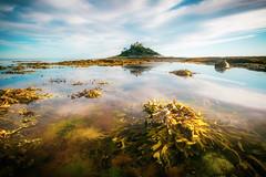 St Michael's Mount (Timothy Gilbert) Tags: seaweed beach wideangle reflection atlantic ultrawide panasonic stmichaelsmount gx7 olympus918mmf4056 coast marazion cornwall