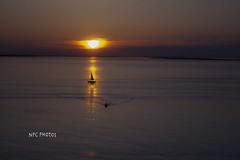 sailing at dawn (NPC Rebel) Tags: sailing sunrise calm serene escape sailboat ocean sea