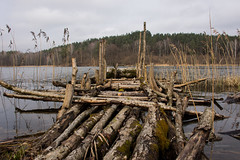 The Fishing Deck (modestmoze) Tags: deck fishing 2017 april spring 500px view beautiful nature wooden wood logs lines trees treeline plants grass outside lithuania outdoors water lake wet brown yellow sky clouds blue old travel explore many round