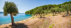 Solaris 36OD August 2016 (tine_stone) Tags: august2016 boot cres croatia kornaten kroatien segelboot segeltörn solaris36od urlaub private sailing sea tine tinefoto vacation water