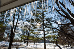 2017 - March - CHS - Spring Break Ice Sickles Honors Building-12.jpg (ISU College of Human Sciences) Tags: icesickles honors building winter springbreak snow