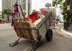 Melhores amigos (Ars Clicandi) Tags: sãopaulo brasil brazil saopaulo sao são paulo avenida paulista cachorro pet dog carroça catador reciclagem fotografia de rua street photo fotografiaderua streetphoto br