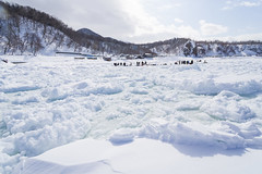 Walking on Driftice 02 (tomomega) Tags: 知床 流氷 北海道 雪 氷 ice snow driftice