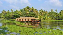 Economy class(Explored) (Akhil Sanjeev) Tags: lake houseboat punnamada alappuzha alleppey kerala tourism