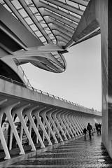 The spaceship has landed (jo.misere) Tags: luik liege guillemins calatrava station bw zw