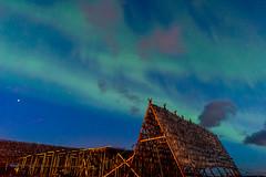Northern Lights II (lara_1012) Tags: northernlights aurora night sky stars norway lofoten
