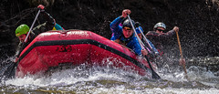 VeV 2017 #13 (GilBarib) Tags: vaguesenvillesvev québec gilbarib riii whitewater kayak canoes xt2 rivièrestcharles xt2sport fujifilm xf100400mmf4556rlmoiswr canot xf100400 fujix fujixsport