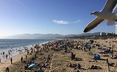 Santa Monica Pier (AkaashMaharaj) Tags: santamonica pier beach california globalorganizationofparliamentariansagainstcorruption gopac
