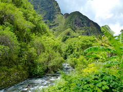Iao valley maui (Leguman vs the Blender) Tags: hawaii maui