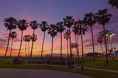 venice sunset (sjg310) Tags: sunset palmtrees venice la losangeles california venicebeach landscape nature clouds hdr