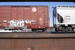 Suey (Psychedelic Wardad) Tags: freight graffiti dirty30 d30 mf dts suey