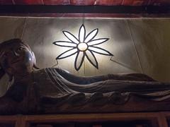 JSMQ1445 (francois f swanepoel) Tags: buddha calitzdorp flower hyltonnel southerncape suidkaap