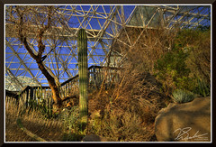 Bioshere_7134d (bjarne.winkler) Tags: day8 photo foto safari the south side is desert here testing drought resistant plants done biosphere 2 north tucson az remember 1 mother earth