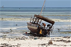 I Wonder What the Catch of the Day Was (The Spirit of the World) Tags: fishing beach boat fishingboat anchors sailingboat tanzania africa eastafrica nature fishermen ocean indianocean seascape candid