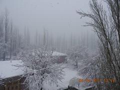 DSCN2310[1] (drmohammad_ibrahim200760) Tags: heavy snow fall skardu month april