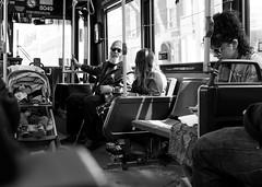 Public Transit (Yewbert The Omnipotent) Tags: toronto canada lightroom urban people ttc bus candid puppy cute light bw blackwhite nikon d750 tamron 35mm
