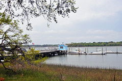 MARKER 13 MARINA (KayLov) Tags: hilton head nature vacation marina tree oak hut shack moorings
