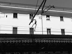 Pillows (Marco Di Battista) Tags: pillows iphoneography station railstation railway train stazione trastevere blackwhite blackandwhite cuscini stesi al sole sun sohn