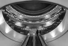 Escalators in El Ateneo Bookstore (hzeta) Tags: escalators escalera mecanica el ateneo grand splendid buenos aires argentina bookstore libreria books libros culture cultura symmetry simetria geometry geometria architecture arquitectura black white blanco y negro bw bn