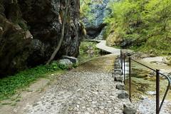 vertova7 (aletaty) Tags: vertova trekking sentiero