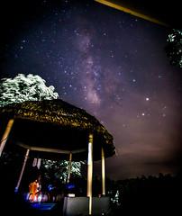Milkway - Seen from Magura Bangladesh (Shadman Samin) Tags: milky way galaxy clouds night bangladesh bangla views like follow bengali bangladeshi new 2017 nikon d610 50mm sigma stars purple