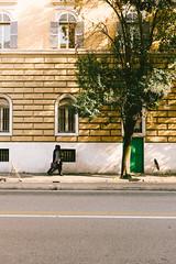 This is the last time (lorenzoviolone) Tags: finepix fuji400h fujix100s fujifilm fujifilmx100s vsco vscofilm x100s asphalt door entrance green lines mirrorless strangers streetphoto streetphotocolor streetphotography tree treetrunk walk:rome=jan2017 walking windows roma lazio italy