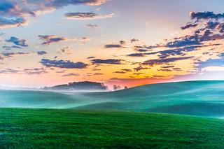 Mystic field of light !
