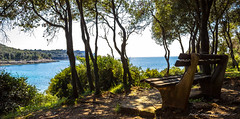 Feel free to enjoy... (patrik_zubaj) Tags: pula istria croatia europe sun sea adriatic green blue canon nature summer travel tourism walk holiday daylight heaven earth enjoy verudela efs1855mm