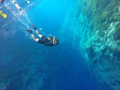 No lindo lago do amor! Lagoa Misteriosa, Bonito, Mato Grosso do Sul, Brasil (lcmarinho1) Tags: brazil matogrossodosul água mergulhador mergulho bonito misteriosa lagoa lagoamisteriosa