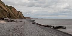 Sheringham (Roger Hanuk) Tags: beach cliff england groyne kodakektar norfolk sea seadefence seascapes sheringham xequals unitedkingdom