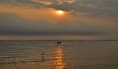 Miramare, Trieste, at sunset (Alona Azaria) Tags: sunset sun golden sea trieste miramare italy venezia friuli nikon nikkor d800 28300mmf3556