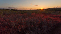 Sunset Over the Red (Ken Krach Photography) Tags: dollysods westvirginia