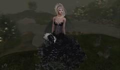 #130 (TABATHA KOBA) Tags: lucky white queen black night girls weddings