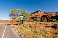 UT24 Scenic Route (Mauro Grimaldi) Tags: 2016 usa autumn capitolreef capitolreefnationalpark honeymoon nationalpark ontheroad parco park road scenicbyway southwest travel trip usaontheroad2016 ut24 ut24scenicbyway utah viaggio west