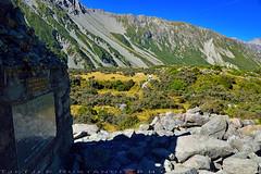 Tracks are formed and well marked (T Ξ Ξ J Ξ) Tags: newzealand aoraki mountcook d750 nikkor teeje nikon2470mmf28 tracks day mountain cook