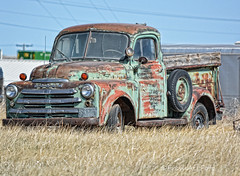 Sunbathing (Explored) (RootsRunDeep) Tags: truck decay abandoned tires store laramie wyoming rust ruin patina wooden bed htt 1940s 1949 outtopasture