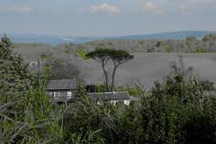 Experimental landscape (lumun2012) Tags: lucio mundula nature natura