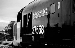 New Identity (JordanMossom) Tags: 37424 37558 avrovulcanxh558 class37 374 375 largelogo drs directrailservices cumbria cumbriancoastline maryportcarlisle maryport station lhcs ee englishelectric tractor northern northernengland northwest arrivarailnorth