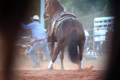 DouglasCountyRodeo_009